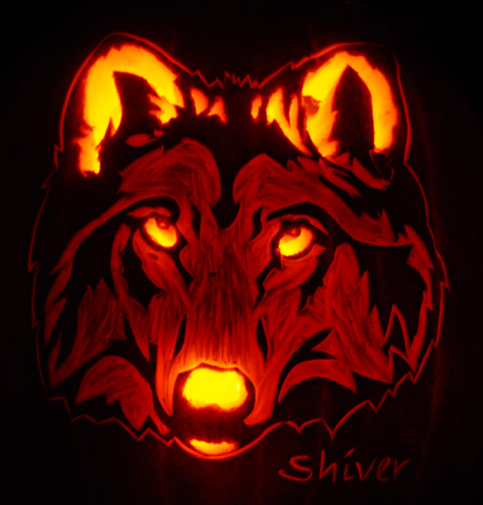 Pumpkin Carving Shriver Wolf